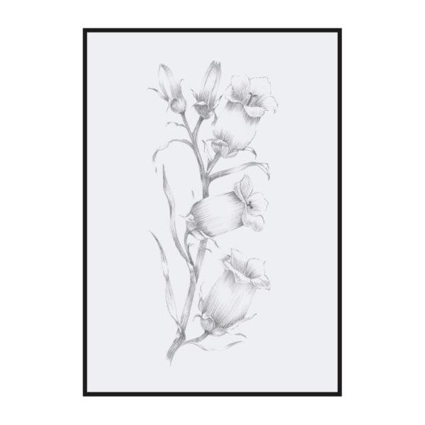Постер на стену Ботаническая иллюстрация 3