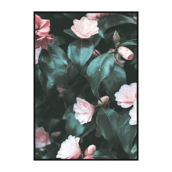Постер на стену Куст цветы