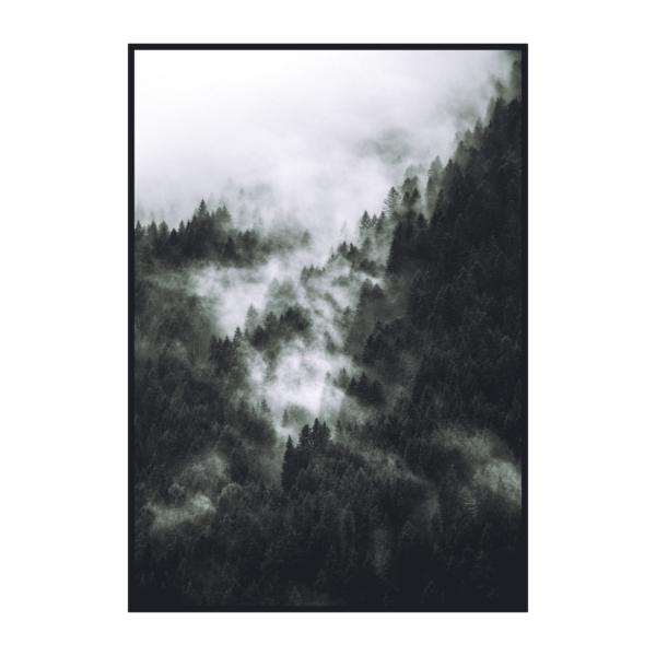 Постер на стену Лес в тумане