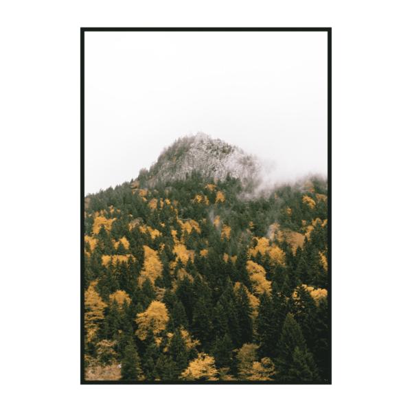 Постер на стену Осенний горный лес