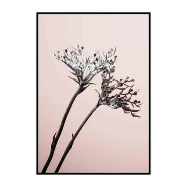 Постер на стену Палочки к цветку маку