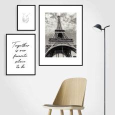 три постера франция