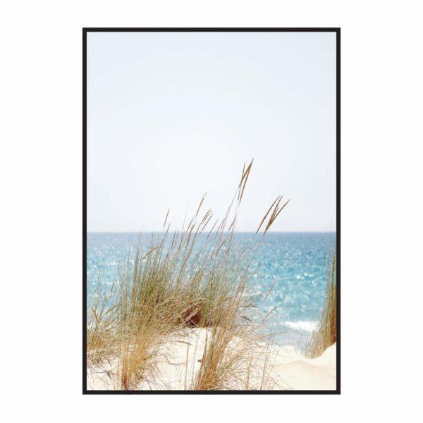 Постер на стену Пляж с травой