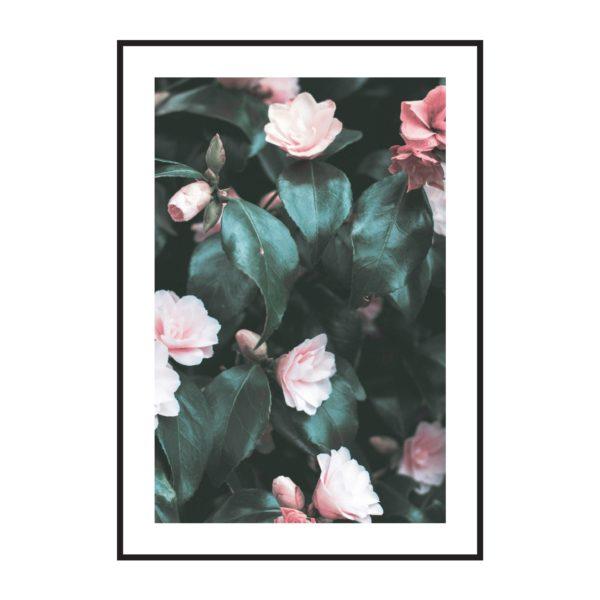 Постер на стену цветы куст