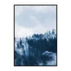 Постер на стену Синий лес в тумане