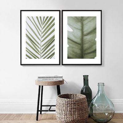 Пара постеров с листами пальмы
