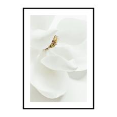 Постер на стену Цветок