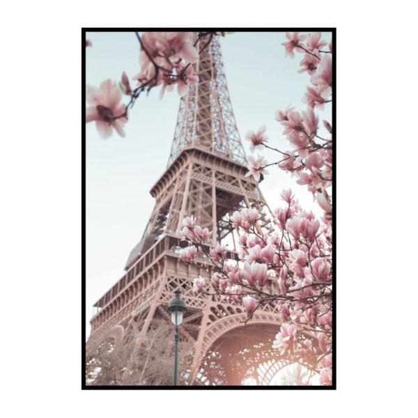 """Постер на стену """"Эйфелева башня и магнолии"""""""
