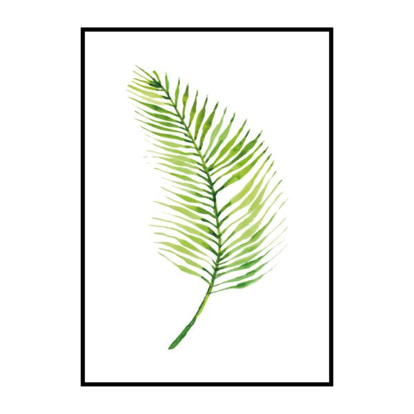"""Постер на стену """"Лист пальмы с тонкими листьями"""""""