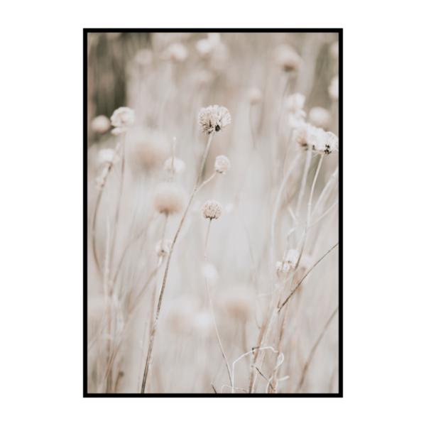 Постер на стену Цветы бежевые