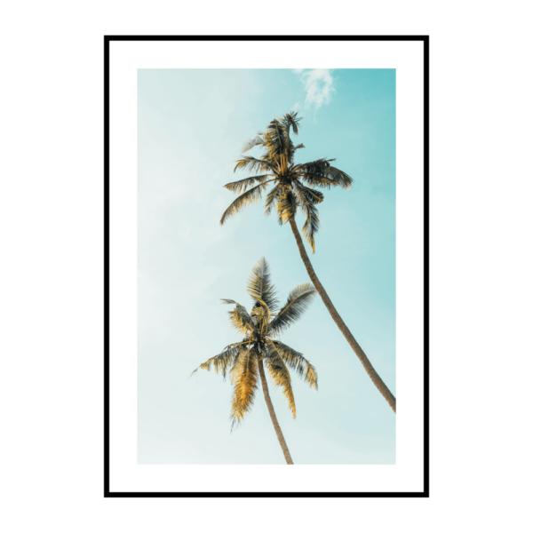 Постер на стену Две пальмы