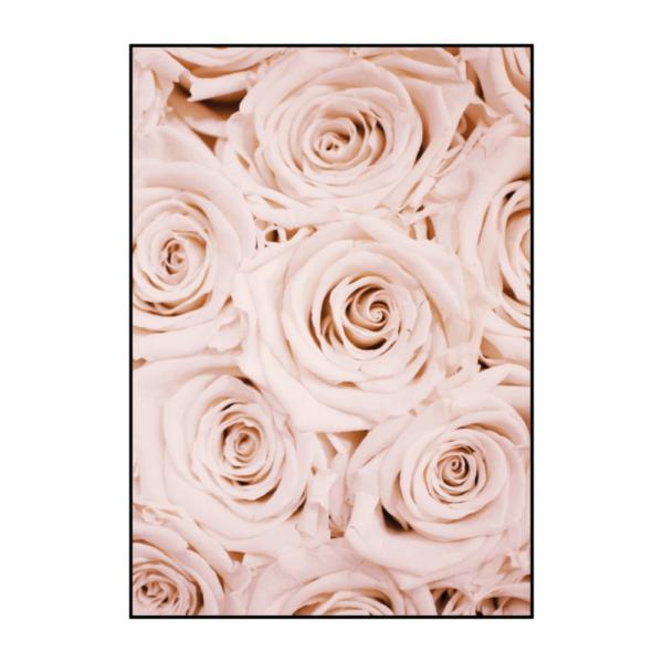 Постер на стену Розы