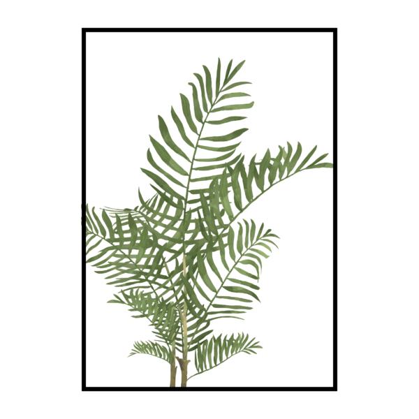 Постер на стену Пальма