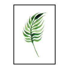 """Постер на стену """"Лист пальмы с толстыми листьями"""""""