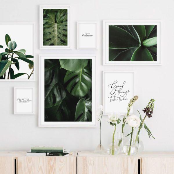 Галерея постеров с растениями