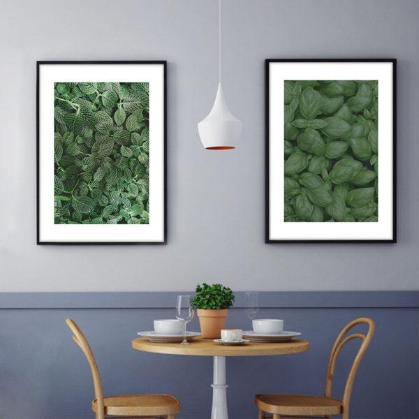 постеры зеленый капуста крупно скандинавский стиль