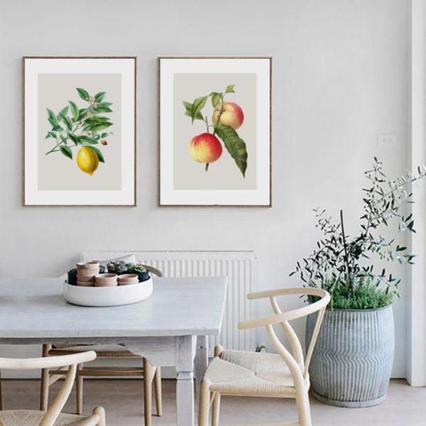 постеры в кухню яблоки и груши