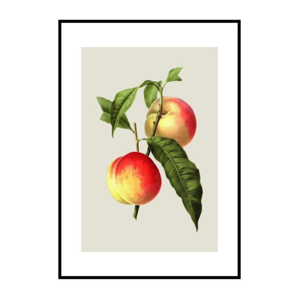 Постер на стену Персик