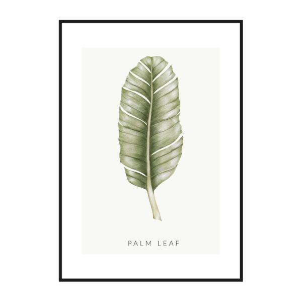 Постер на стену palm leaf
