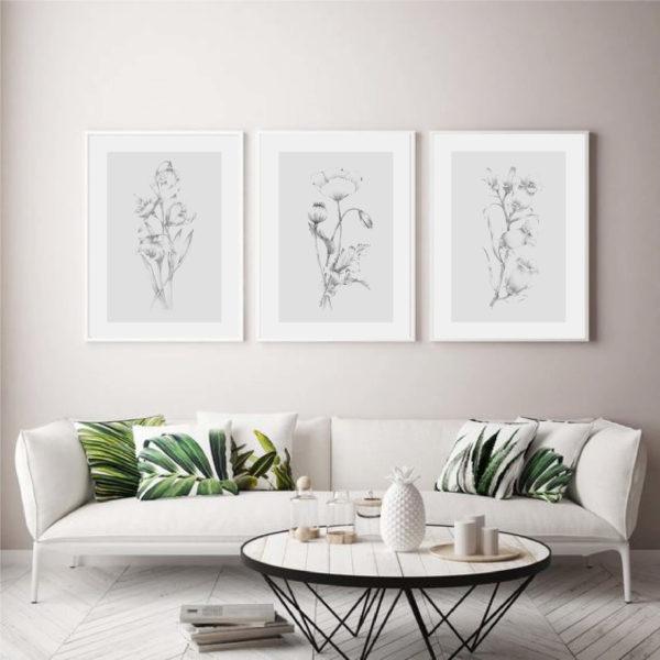 Трио постеров с ботаническими иллюстрациями