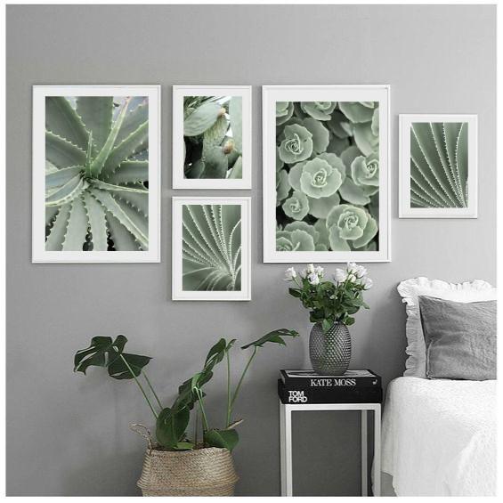 Галерея постеров с кактусами