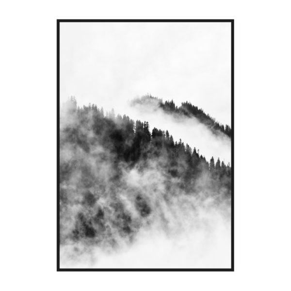 "Постер на стену ""Лес в тумане черно-белый"""