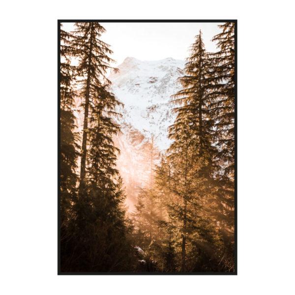 "Постер на стену ""Лучи солнца в зимнем лесу"""