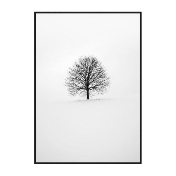 """Постер на стену """"Одинокое дерево"""""""