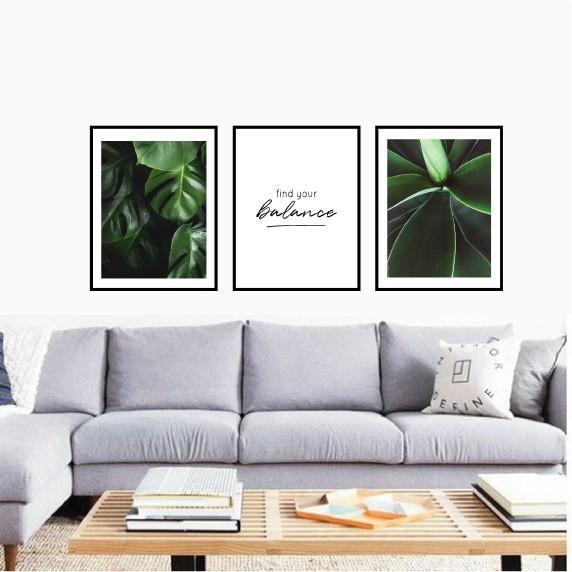 Трио постеров с растениями Find your balance