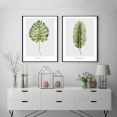Пара постеров с ботаническими иллюстрациями