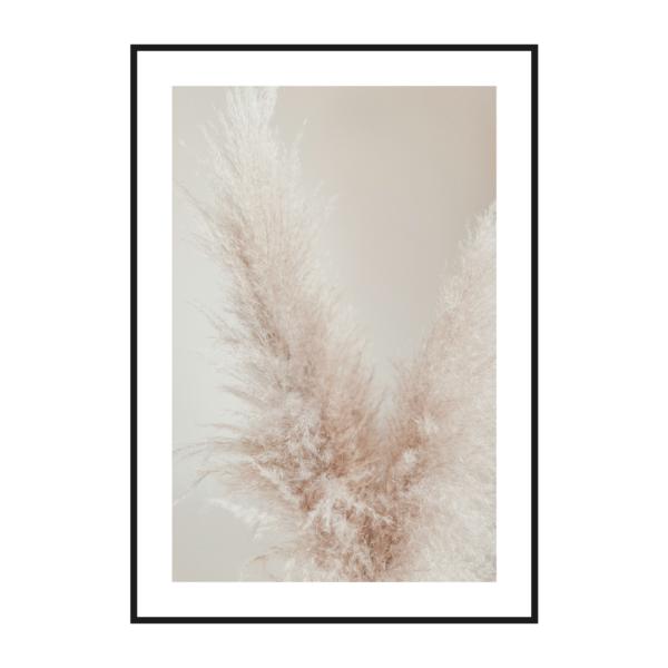 "Постер на стену ""Пампасная трава"""