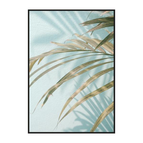 Лист пальмы голубой постер