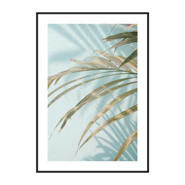 Лист пальмы голубой