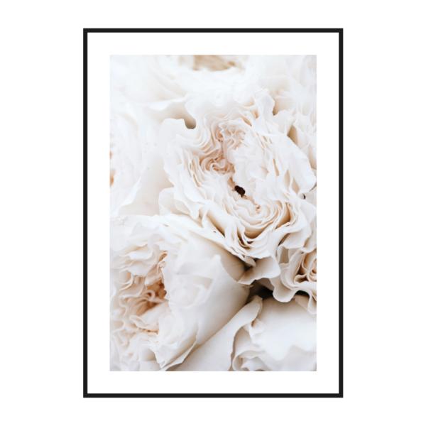 постер лепестки цветка