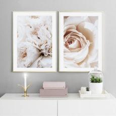 Пара постеров с розами
