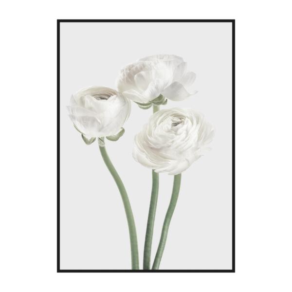 постер серый три цветочка