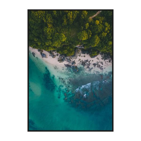 Берег океана и лес вид сверху постер