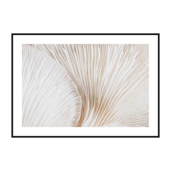 постер с грибными узорами