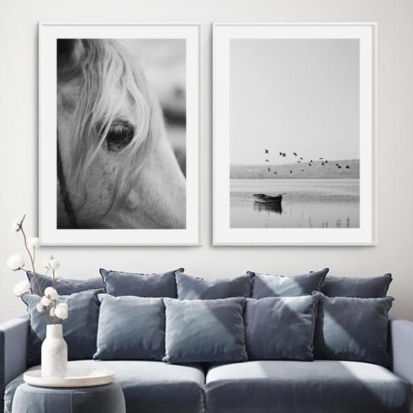 пара постеров чб серый конь лошадь природа