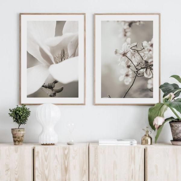Двойной постер с цветами Магнолии в деревянной рамке