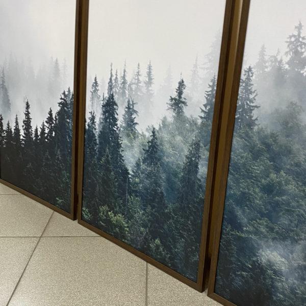 три постера лес туман