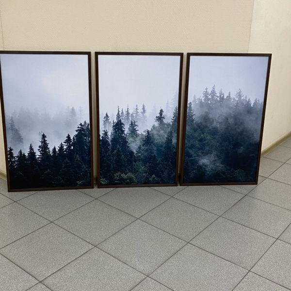 постер триптих лес