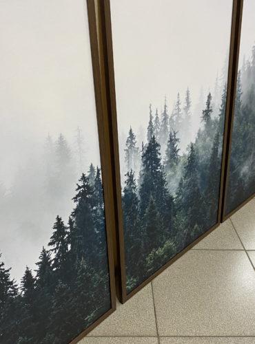 три раздельных постера лес в тумане для интерьера
