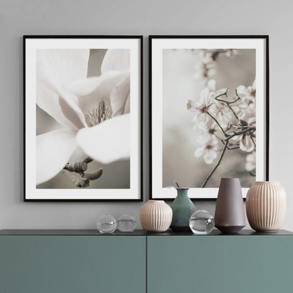 композиция из 2 постеров