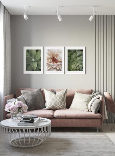 Трио постеров с георгином