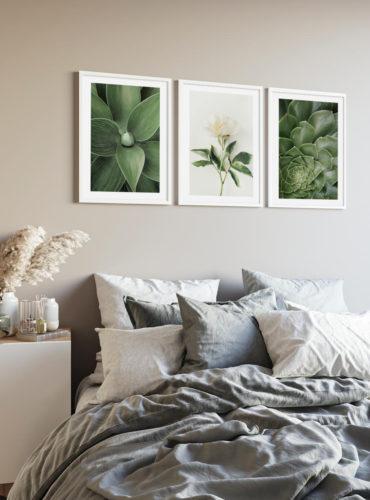 Трио постеров Белый цветок